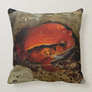 Very nice tomato frog. Frog with unusual color Throw Pillow