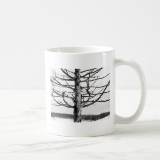 Very old tree in black and white classic white coffee mug