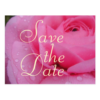Very Pink Save The Date Rose Postcard