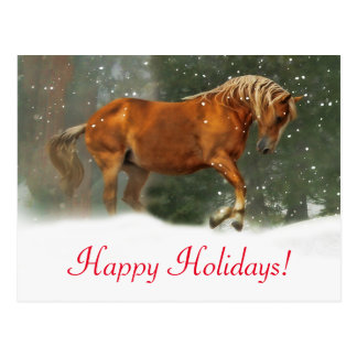 Very Pretty Horse in the Snow Holiday Postcard