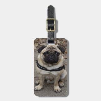 Very Serious Pug Bag Tag