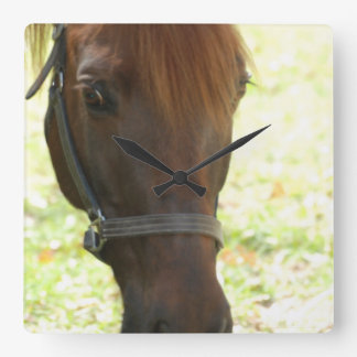 Very Sweet Chestnut Horse Square Wall Clocks