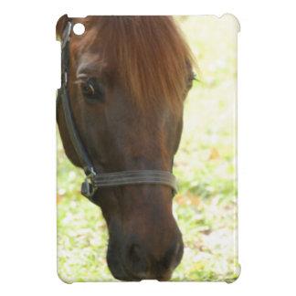Very Sweet Chestnut Horse iPad Mini Case