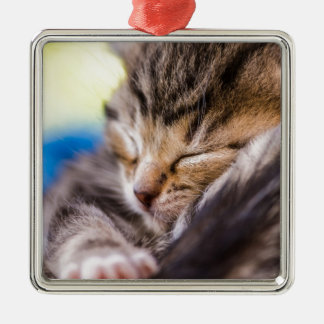 very young cement, sleeping christmas ornaments