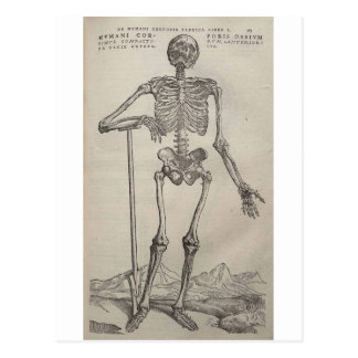 Vesalius 1 postcard