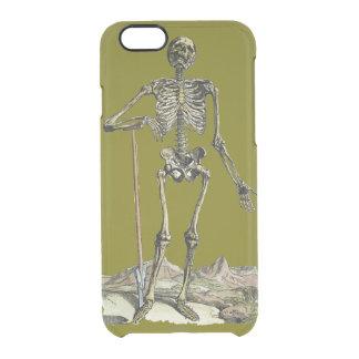 Vesalius: Skeletal System Clear iPhone 6/6S Case