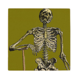 Vesalius: Skeletal System Wooden Coaster