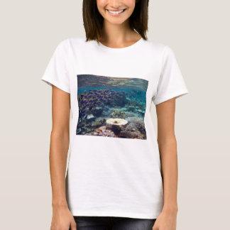 Vest Top T-Shirt - Powder Blue Surgeon Fish