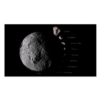 Vesta and Asteroid Gallery Business Card