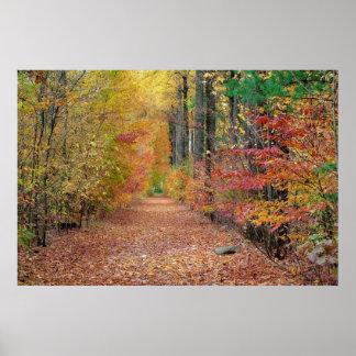 Vestíbulo del otoño póster