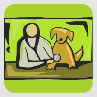 VET700 VET VETERINARIAN ANIMALS PETS MEDICAL CARE SQUARE STICKER