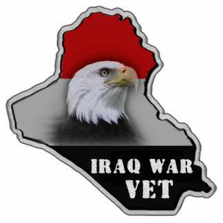 Veterano de los militares de la guerra de Iraq Esculturas Fotográficas