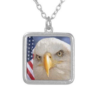 """""""Veterans Day"""" Necklaces"""