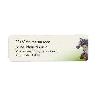 Veterinarian animals return address labels