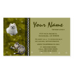 Veterinarian Appointment Business Cards ~  V2