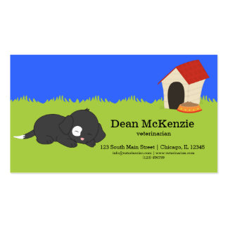 Veterinarian Double-Sided Standard Business Cards (Pack Of 100)