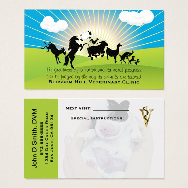 Veterinarian Dancing Animals Business Card