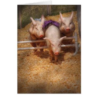 Veterinarian - Getting past hurdles Greeting Card