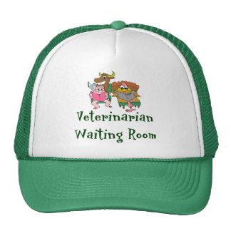 Veterinarian Hat