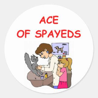 VETerinarian joke Classic Round Sticker