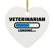 Veterinarian loading ceramic ornament