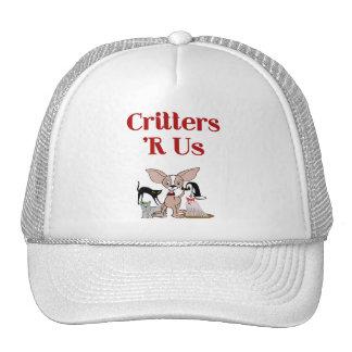 Veterinarian, Pet Sitter or Pet Groomer Hat