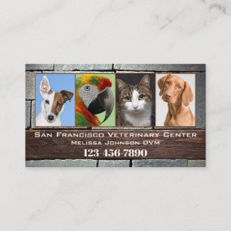 Veterinarian Photo Appointment Business Card
