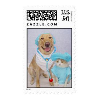 Veterinarian Postage