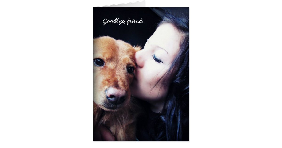 Veterinarian gifts on zazzle veterinarian thank you for rainbow bridge pets card negle Images