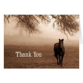Veterinarian Thank You | Horse in the Fog Card