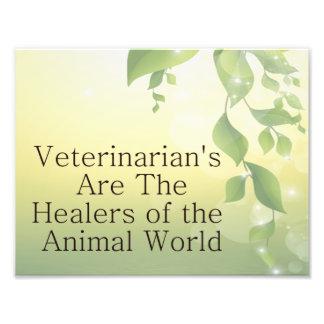 Veterinarians Are Healers Photo Art