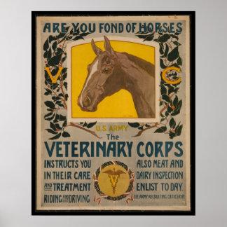 Veterinario del VINTAGE WW1. POSTER del cuerpo