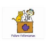 Veterinario futuro - chica con el gato postal