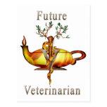 Veterinario futuro postales