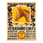 Veterinary Corps Postcard