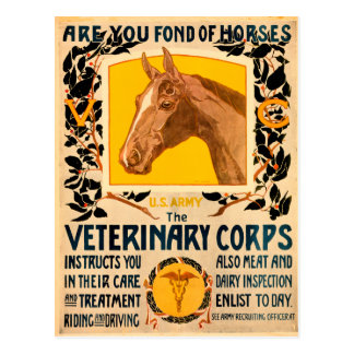 Veterinary Corps Postcard