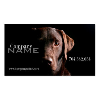 Veterinary Dog Doggy Pet Care Card Business Card