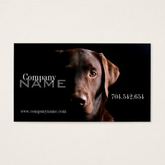 Veterinary Dog Doggy Pet Care Card Doctor Clinic