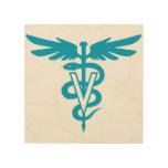 Veterinary Medicine Wood Print