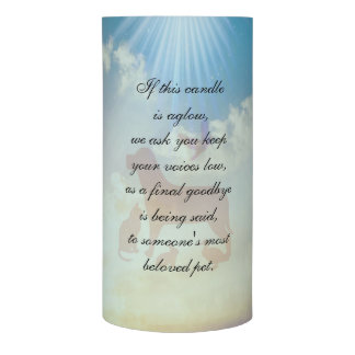 Veterinary Office Flameless Candle