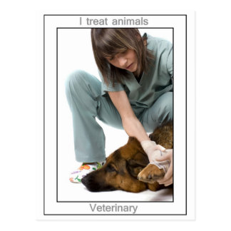 Veterinary Postcard
