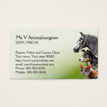 Veterinary practice appointment and business card