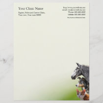 Veterinary surgeon business letterhead