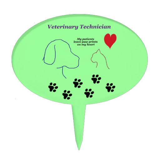 College admission essay for veterinary technology