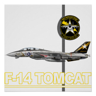 VF-33 Starfighters Print