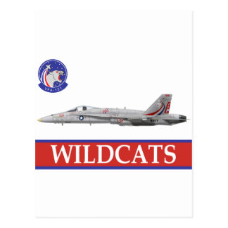 VFA-131 WILDCATS Squadron with F-18 Postcard