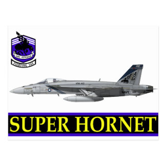 "VFA-143 ""Pukin' Dogs"" F-18 Hornet Postcard"