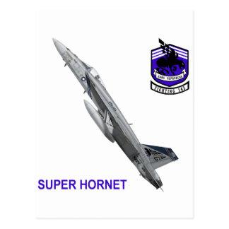 """VFA-143 """"Pukin persigue"""" el avispón F-18 Postal"""