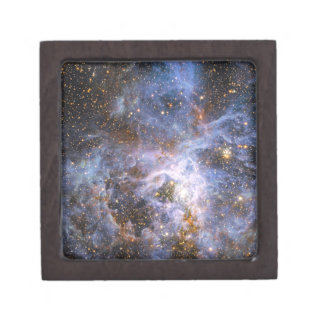 VFTS 682 in the Large Magellanic Cloud Jewelry Box