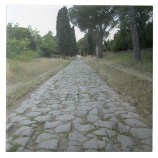 Vía la manera de Appia Appian, camino romano Azulejo